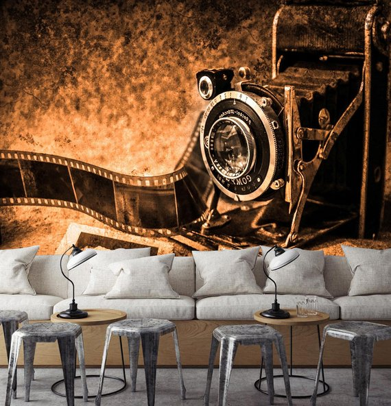 Antique Camera Home Theater Wall Mural