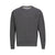CHAMPION POWER BLEND FLEECE SWEATSHIRT (more colors)