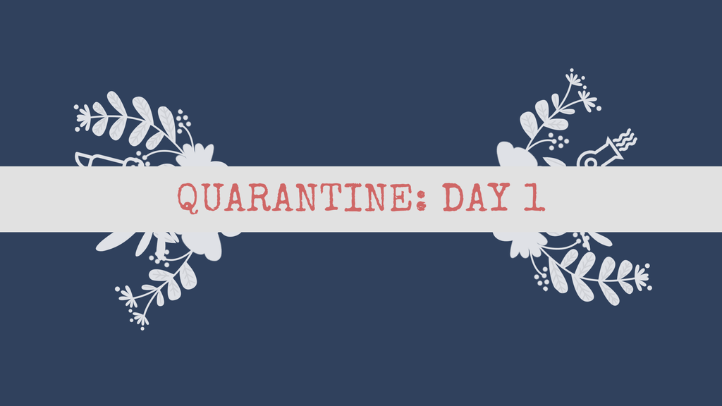 Quarantine: Day 1