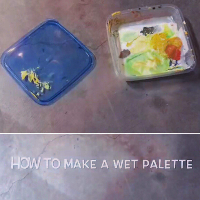 How to Make a Wet Palette for Only Five Dollars!!