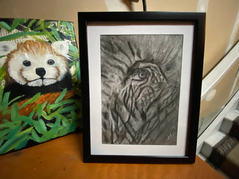 Wise Eye Original Charcoal Drawing