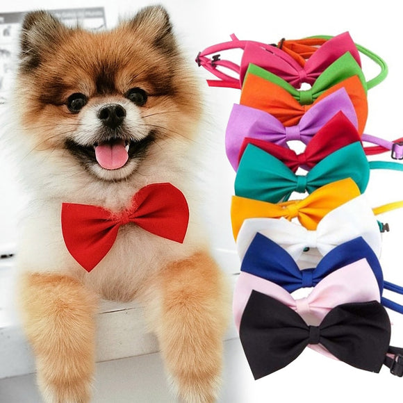 Pet Dog Cat Necklace Adjustable Strap for Cat Collar Dogs Accessories pet dog bow tie puppy bow ties dog Pet supplies - Shopgoggles