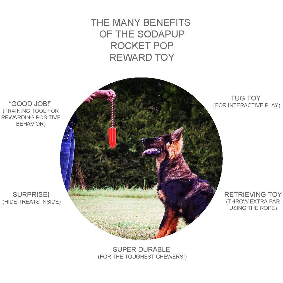 Rocket Pop- Reward Dog Chew Toy- Large
