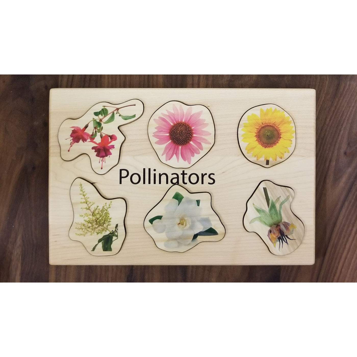 Pollinator puzzle - Wooden puzzle - different types of pollinators