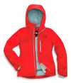 Womens The North Face Descendit Jacket