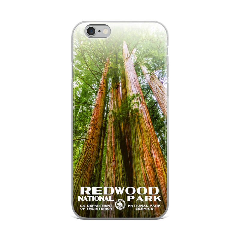 Redwood National Park iPhone Case