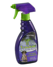 Load image into Gallery viewer, UR'N Trouble Pet Stain and Odor Remover
