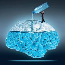 Dehydration and the Brain