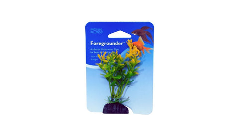 BETTA FOREGROUNDER - MONEYWORT GREEN ^8CM