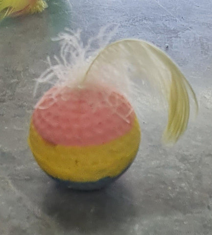 CT FOAM BALL WITH FEATHER