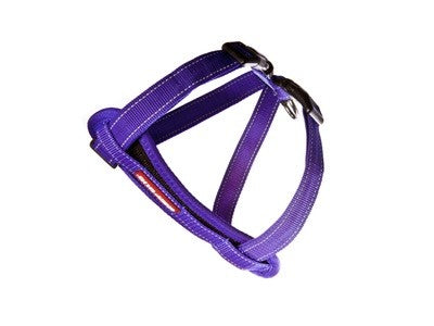 EZYDOG HARNESS CP XS PURPLE ^H09XSPP