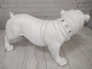 Vintage Large British Bulldog Life Size Resin Figure White Garden or Home Interior