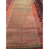 Bidjar Camelhair - Barrington Fine Rug Gallery
