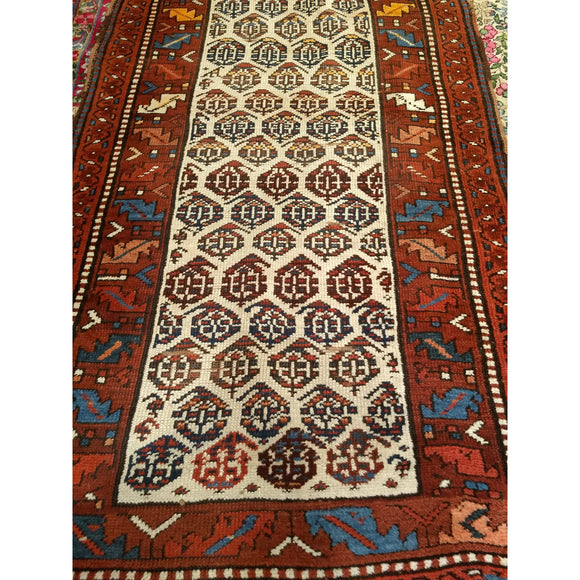 Bidjar - Barrington Fine Rug Gallery