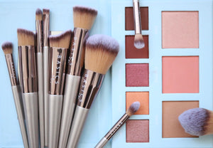 BACKORDER: Luxury 10 Piece Vegan Brush Set