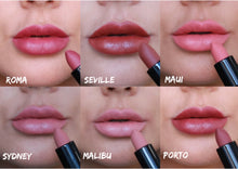 Load image into Gallery viewer, Basics Velvet Lipstick