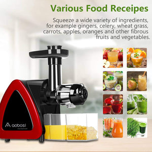 Bright Red Masticating juicer