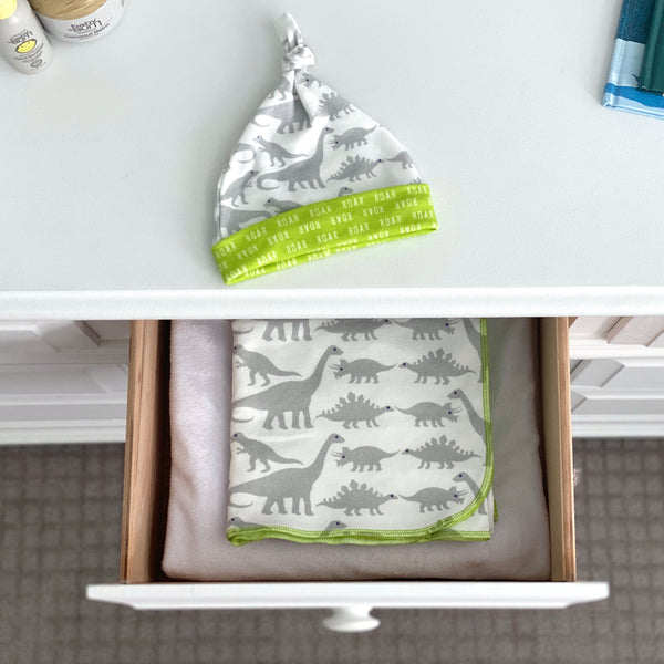 Grey Dinosaurs Organic Cotton Knit Swaddle Blanket & Hat Set