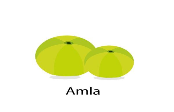 Amla: Hair Super Food
