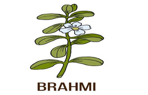 How Brahmi Can Change Your Hair