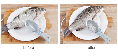 Fish Scaling Tool at InCrate.store
