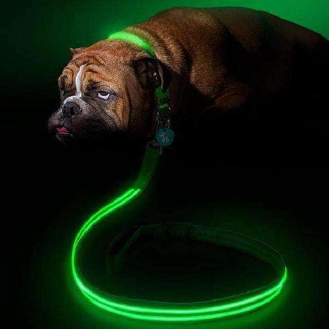 Waterproof LED Night Light Collar (Pet Safety)-Pet Supplies-Blue-S-InCrate.store