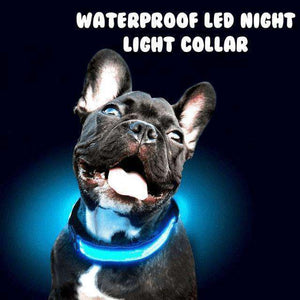 Waterproof LED Night Light Collar (Pet Safety)