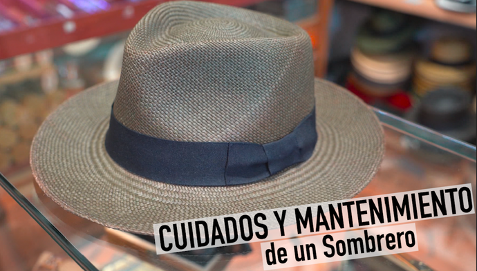 ¿ Cómo mantener un sombrero Panamá? | How to care for a Panama Hat?