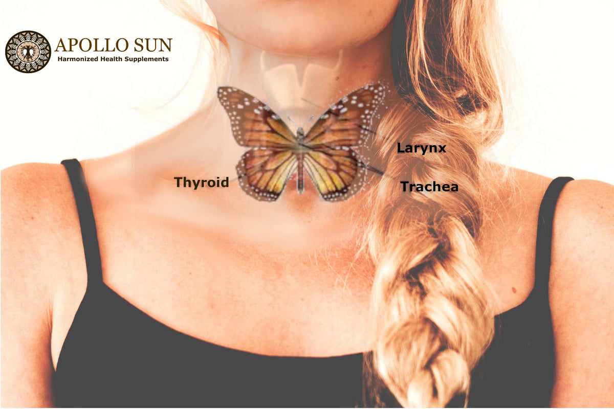 January is Thyroid Awareness Month - by APOLLO SUN