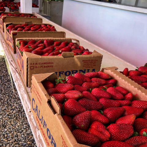 Vista, California Strawberries