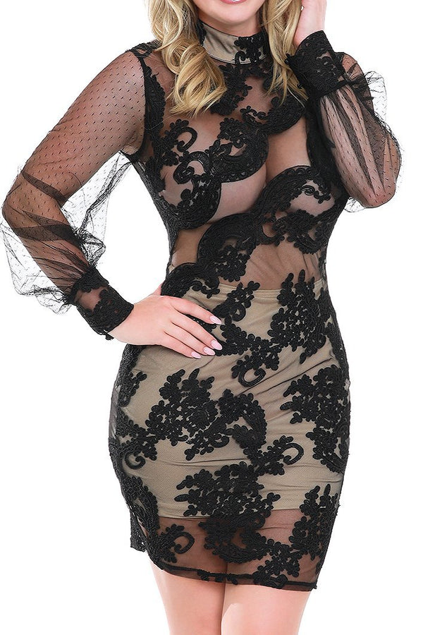 Black Sheer Lace High Neck Dress