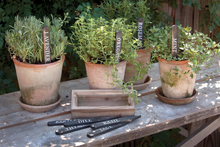 Garden Plant Markers