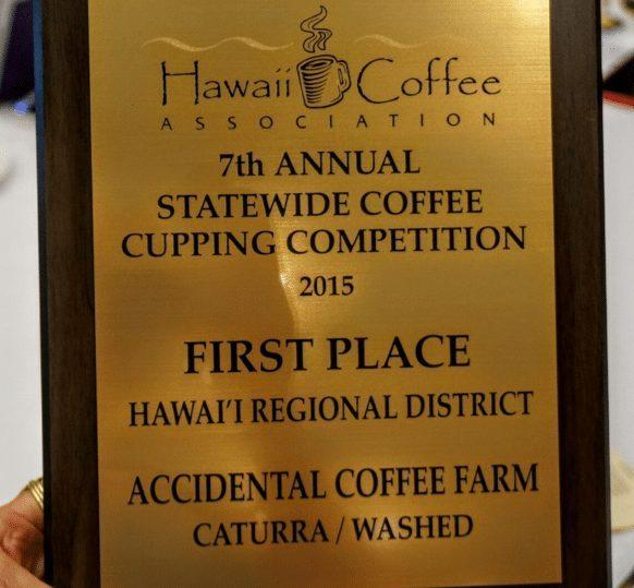 "And the winner is… ""Accidental Coffee Farm"""