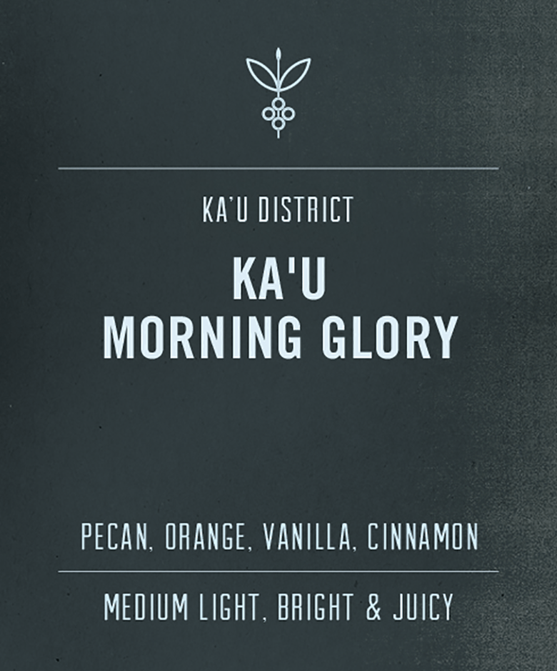 Big Island Coffee Roasters Hawaiian Coffee Ka'u Morning Glory | 100% Kaʻu Coffee 100% Ka'u Coffee | Morning Glory
