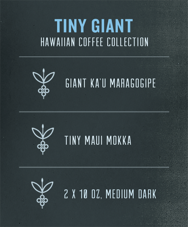 hawaiian coffee collection - mokka and maragogipe