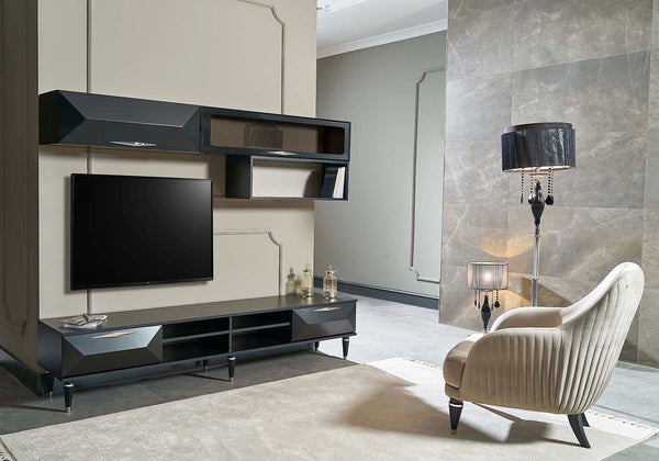 CINAR TV UNIT