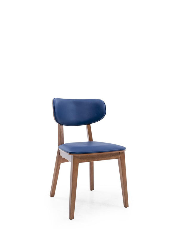 IMAGE DINING CHAIR (474)