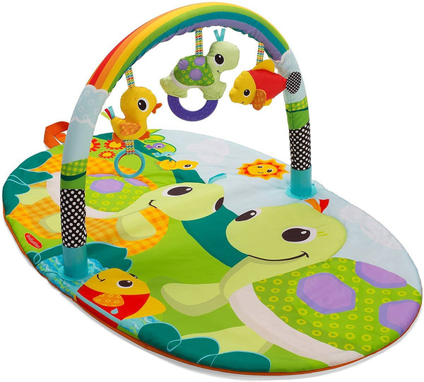 Infantino Explore & Store Activity Gym (Turtles)