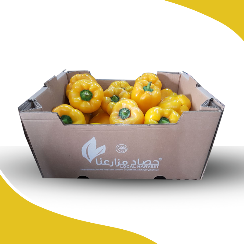 Capsicum Yellow Box 5kg / كرتون فلفل حلو أصفر - 2071MALL