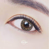 [TrueFiT] GRAY Contact Lense (1 month / 1 pair) - 2071MALL