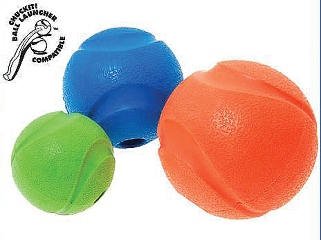 Chuckit! Fetch Ball Dog Toy