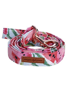 Summer Vitality Dog Leash