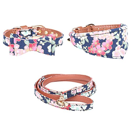 Designer Pup Collars and Leash
