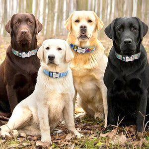 Free Shipping Personalized Nylon Pet ID Tag Collar