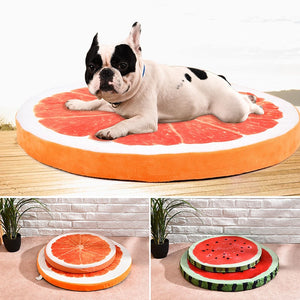 Cute Fruit Slice Dog Beds