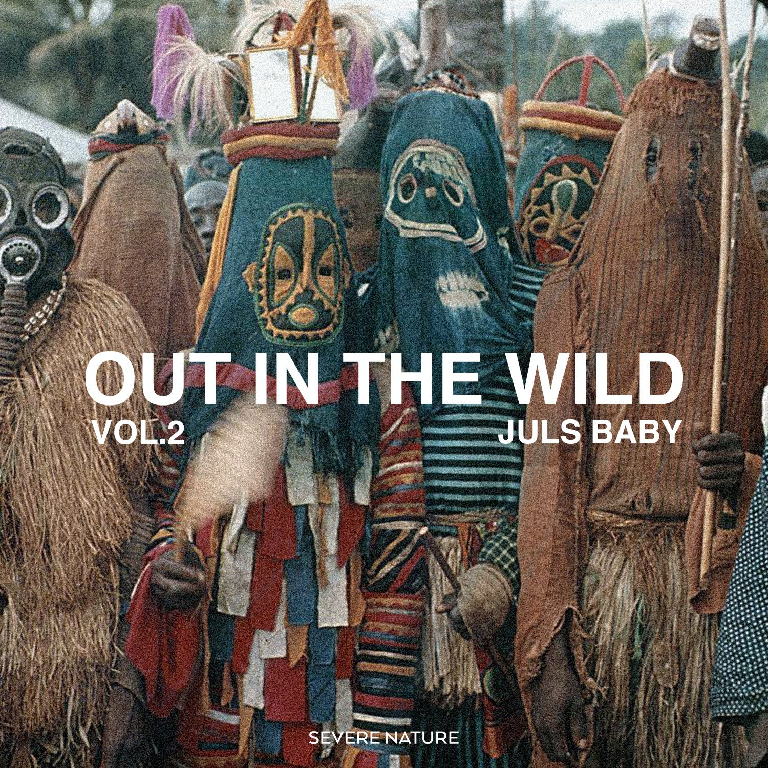 Out In The Wild Vol. 2 Curated by Juls