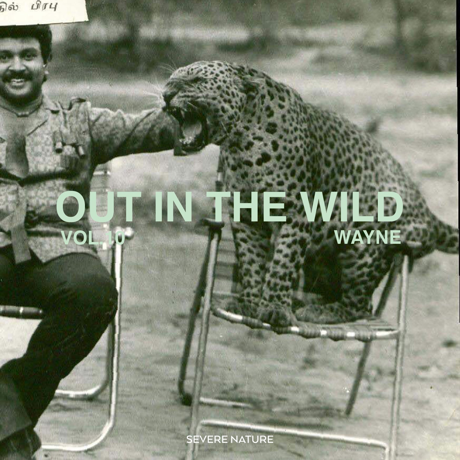 Out In The Wild Vol 10. Curated by Wayne