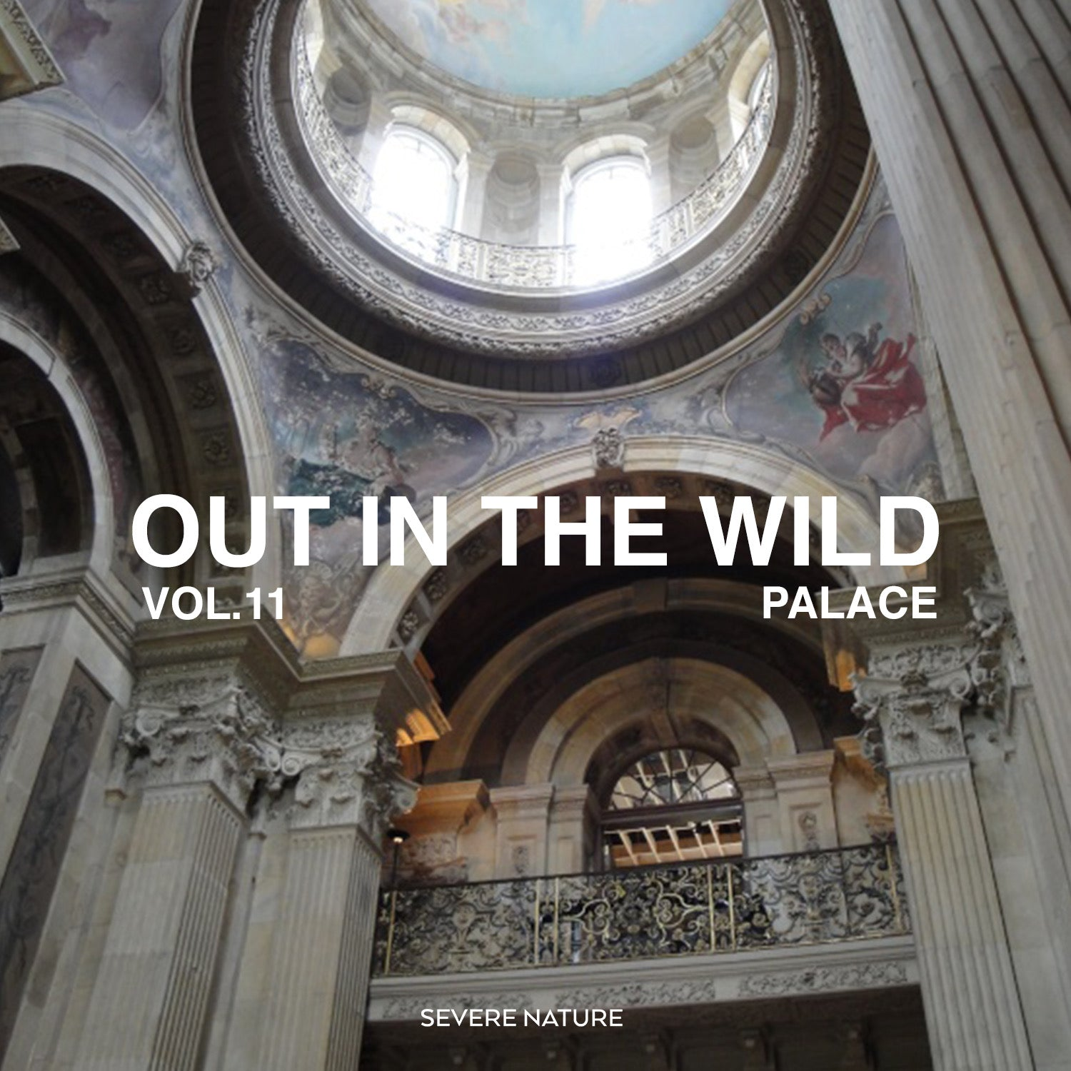 Out In The Wild Vol. 11 Curated by Palace