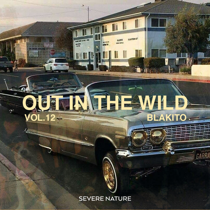 Out in The Wild Vol.12 Curated by Blakito