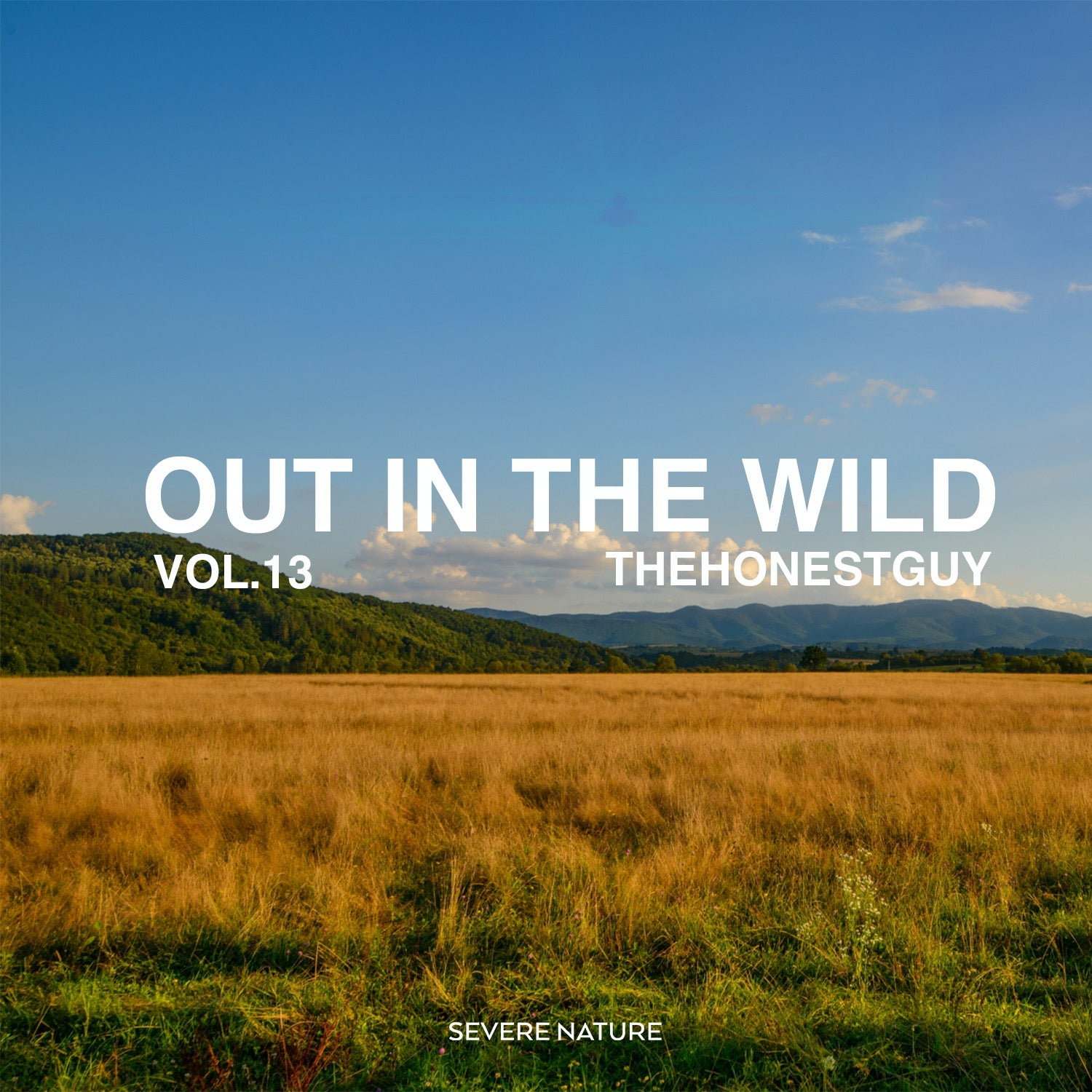 Out In The Wild Vol. 13 Curated by TheHonestGuy